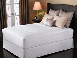 Sunbeam Quilted Heated Mattress Pad