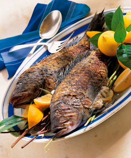 Mediterranean grilled sea bass for Cooking fish on the grill