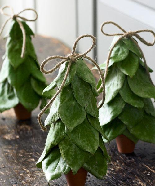 Meijer Christmas Trees