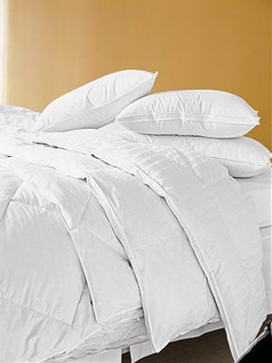 eddie bauer superior goose down comforter