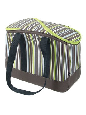 Arcticzone 18 Can Eco Logic Fashion Tote Cooler Review