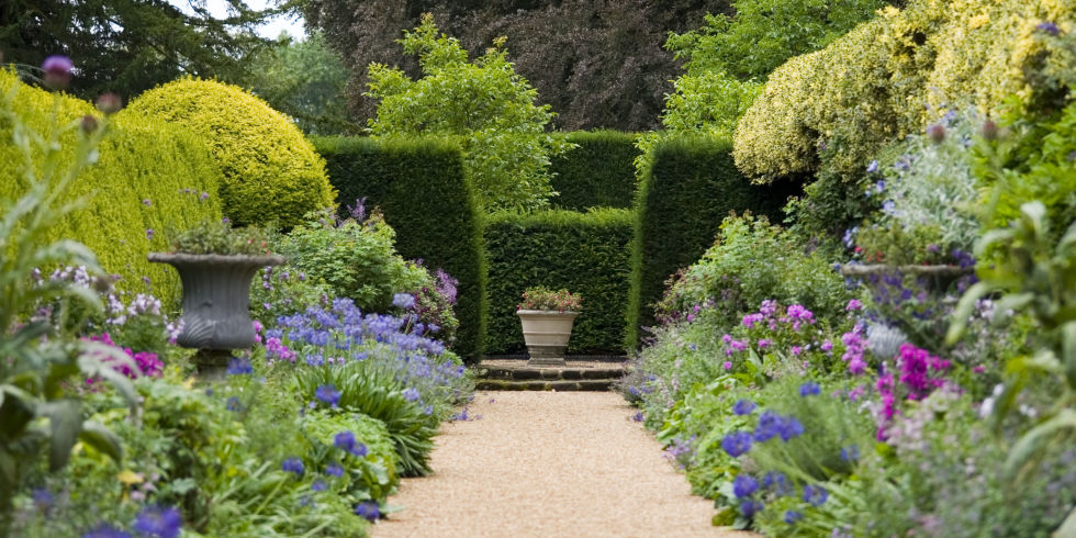 garden with pruned hedges